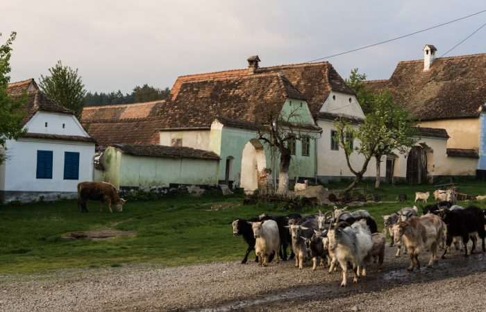 Transylvanian village tour
